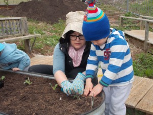 Planting the winter crop in the PSH garden